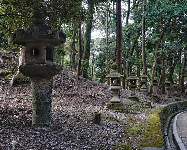Inari Forest
