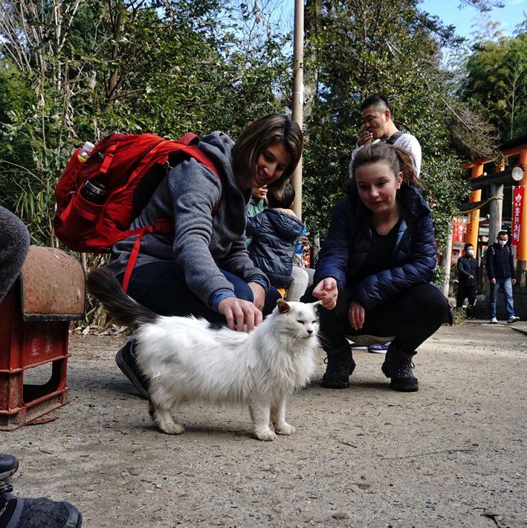 Inari Kitty