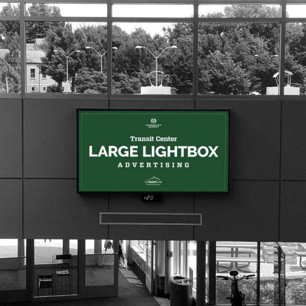 Large Lightbox Mockup V2 800x800