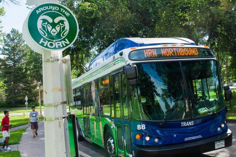 Lsc Transit 310