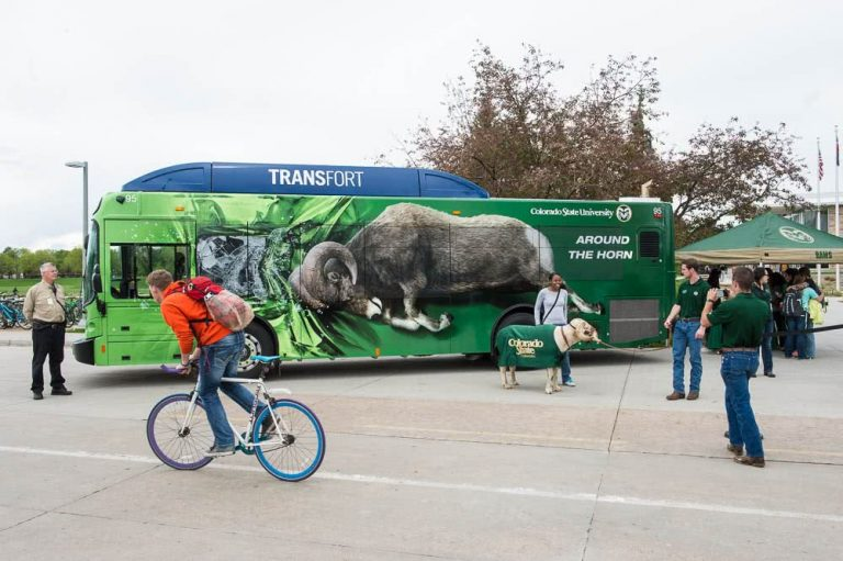 Lsc Transit 312